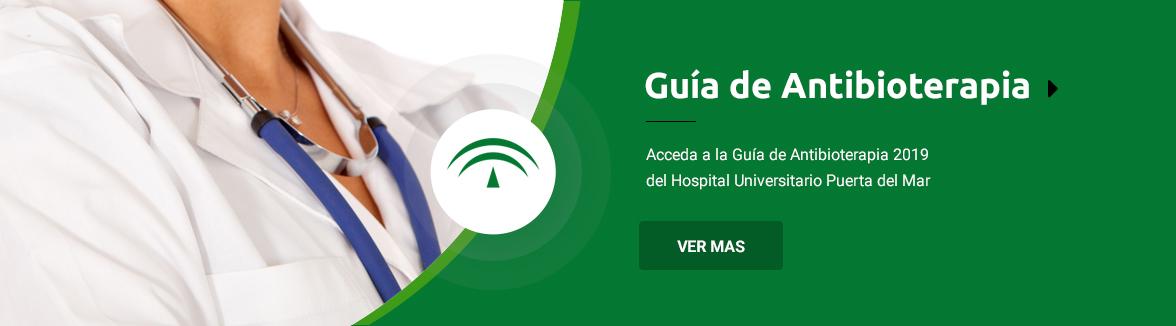 Accede Guia-antibioterapia 2019